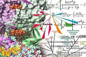 Posisi Bioinformatika dalam Dialektika: 'Riset Basah' dan 'Riset Kering'