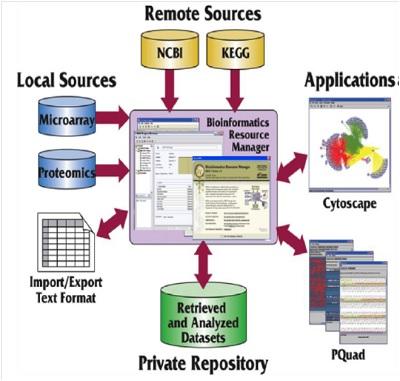 Skema Penggunaan Aplikasi Bioinformatika. Terlihat di contoh ini, bahwa aplikasi bioinformatika sangat bergantung pada ketersediaan data di laboratorium 'basah', yaitu data Microarray dan Proteomics. (gambar dari http://oregonstate.edu)