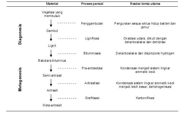 Skema proses pembatubaraan (Van Krevelen, 1992 dengan perubahan dalam Amijaya, 2007).