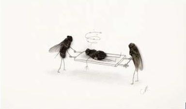 Kematian Seekor Lalat