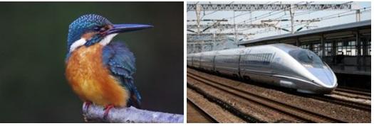 Burung pekaka (kingfisher) dan shinkansen generasi 500.