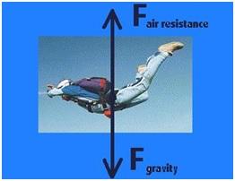 Gaya gesek dan gaya gravitasi pada penerjun payung.