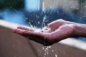 Bersahabat dengan Musim Hujan