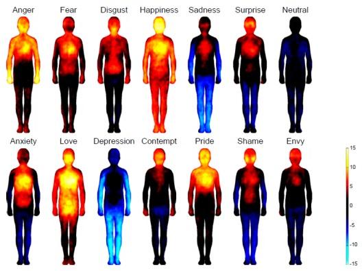 Sampel peta tubuh yang menunjukkan peningkatan sensasi emosi tertentu dapat ditunjukkan dengan rentang warna citra diri berdasarkan pada hasil evaluasi pribadi masing-masing subjek (penelitian Nummenmaa dkk. 2013). Perlu diperhatikan bahwa suhu tubuh hanya merupakan salah satu indikator saja dalam penelitian tersebut.