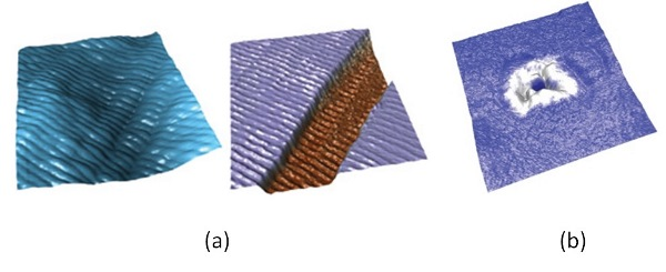 Gambar 4: (a) Contoh gambar hasil PFM pada serat kolagen, (b) Contoh hasil gambar PFM pada sel darah merah manusia. Sumber gambar: http://www.asylumresearch.com