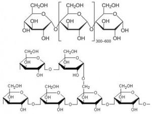 Amilosa dan Amilopektin merupakan salah satu jenis karbohidrat yang terdapat pada beras analog.