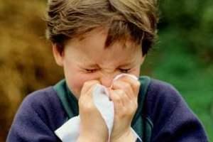 Wabah Flu: Demonstrasi Kekuatan Internet Menghadapi Pandemi