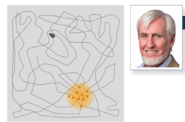 John O`Kofee dan konsep place cells (titik-titik oranye) yang menyusun rangkaian jalan membentuk peta di hipokampus.