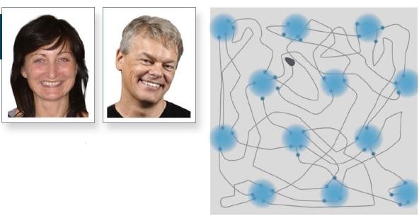 Edvard I Moser dan May-Britt Moser menemukan konsep grid cells di entohirnal cortex (titik-titik biru) yang bila dihubungkan dengan garis imajiner membentuk grid.