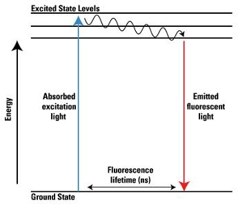 Prinsip fluoresens.