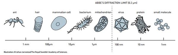 Limit deteksi dari mikroskop konvensional hingga skala minimal 0,2 mikrometer (Abbe's Difraction Limit).