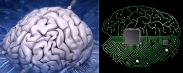 Otak manusia vs prosesor komputer.