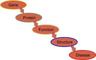 Proses patofisiologi penyakit.