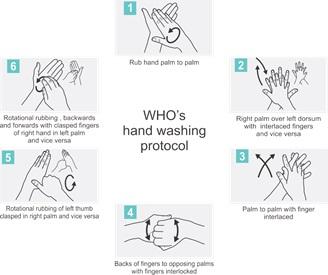 Cara mencuci tangan sesuai protokol dari WHO. Sumber: http://www.healthtard.com/