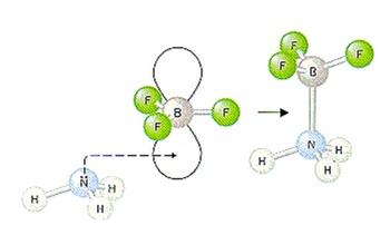 Ilustrasi sifat asam Lewis atom boron (B) yang ditandai dengan adanya orbital kosong.