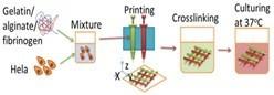 Mekanisme Bioprinting.