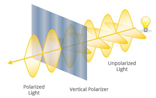 Ilustrasi konsep polarisasi (gambar dari http://www.bigshotcamera.com/)