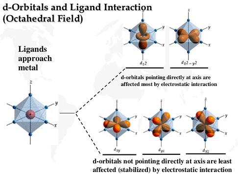 Pembagian orbital d menjadi kelompok eg (2 subkulit atas) dan t2g (3 subkulit bawah). Gambar dari slideshare.net.
