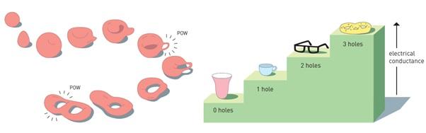 """Transisi fase secara topologi baru terjadi ketika beragam bentuk yang """"tampak berbeda"""" namun """"sama"""" karakter topologinya mengalami transformasi ke bentuk topologi yang lain. Konsep ini digunakan Thouless untuk menjelaskan efek Hall kuantum yang terkait bilangan bulat."""