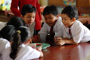Anak SD Harus Belajar Apa?