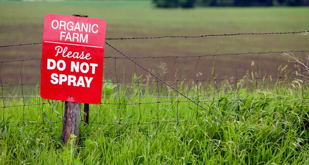 Makanan Organik: Apakah Lebih Sehat? Lebih Bergizi?