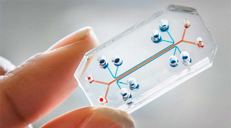 Mengenal Teknologi Mikrofluida: Membuat Pipa Seukuran Pembuluh Darah Kita
