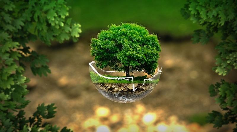 Kimia Bahan Alam: Apa Pentingnya Bagi Kehidupan Manusia?
