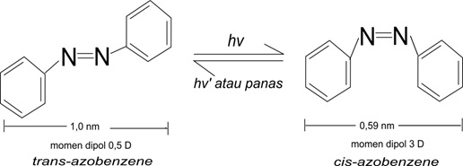 Gambar 1. Struktur umum molekul azobenzene.