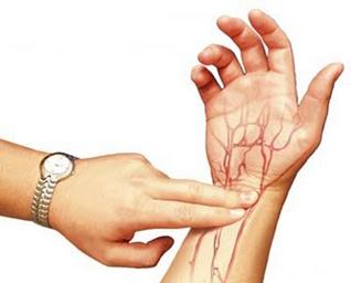 Cara meraba arteri radialis (sumber gambar: www.kapukonline.com).