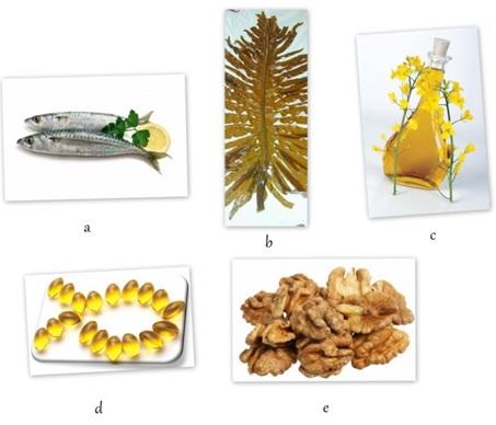 Gambar 2. Beberapa jenis sumber asam lemak tak jenuh (PUFAs), (a) ikan, (b) rumput laut, (c) minyak kanola, (d) minyak ikan, (e) walnut.