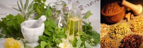 Ilustrasi contoh obat-obat herbal tradisional yang digunakan di Indonesia.