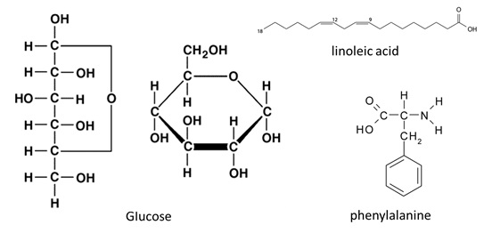 Struktur Kimia Metabolit Primer: Karbohidrat (contohnya Glukosa), Asam Lemak (contohnya Asam Linoleat) , Asam Amino Penyusun Protein  (contohnya Phenylalanin).