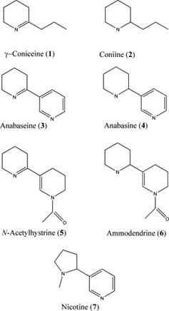 Struktur kimia beberapa senyawa alkaloid.