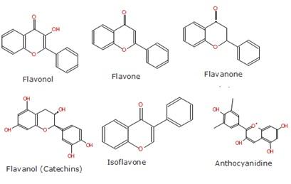 Struktur kimia beberapa senyawa flavonoid.