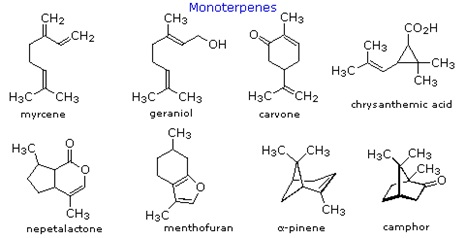 Struktur kimia beberapa senyawa terpenoid.