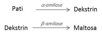 Ilustrasi fungsi enzim amilase.