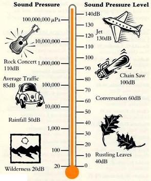 Skala desibel yang dihasilkan oleh beberapa contoh sumber suara. Gambar dari: http://www.hearos.com/